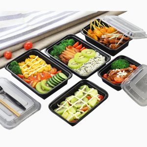 American Frosted Plastic Lunch Box (3)