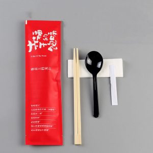 Customizable Disposable Chinese Tableware Package (9)
