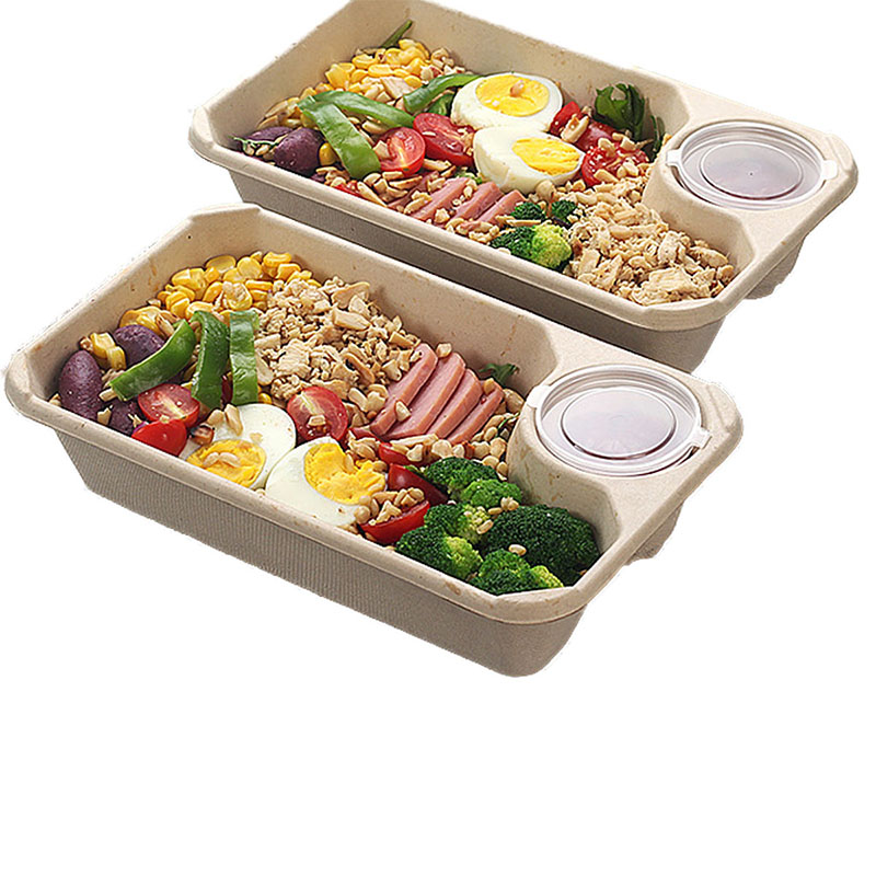 Disposable Degradable Straw Pulp Packed Lunch Box (1)