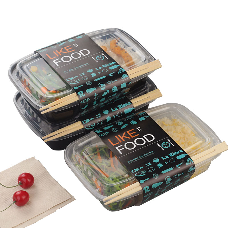 Disposable Plastic Two Compartment Lunch Box (1)