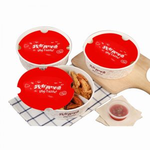 Fried Chicken Compartment Platter Lunch B (2)
