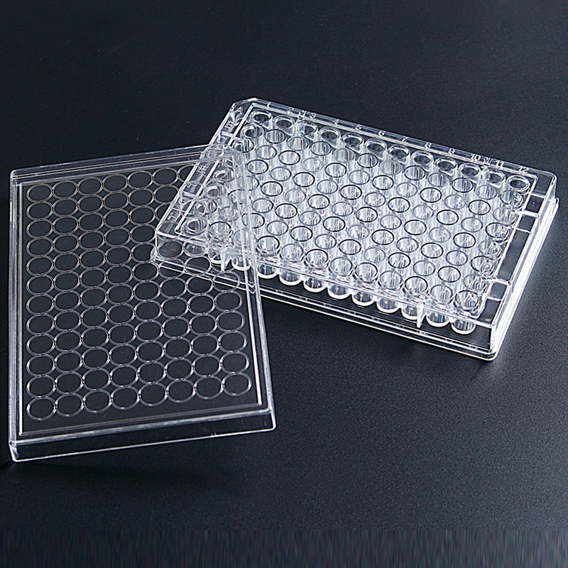 Cell culture plate (2)